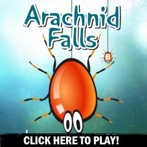 Arachnid Falls - Jeu Action