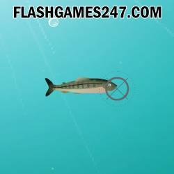 Shooting Fish - Jeu Tir
